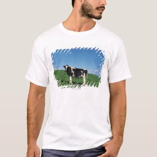 T-shirt Vache du Holstein se tenant dans le domaine,