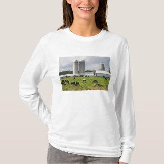 T-shirt Vaches laitières et ferme près du comté de Taylor