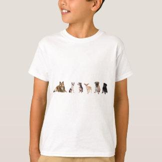 T-shirt Variété de chiens, de Sheltie, de chiwawas, et de