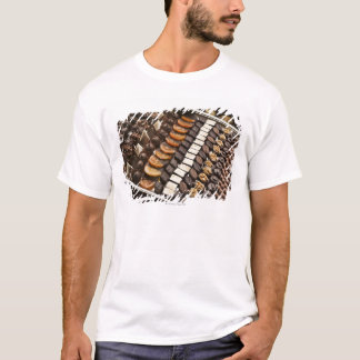 T-shirt Variété de pralines artisanales de chocolat
