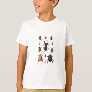 T-shirt Variétés de scarabée