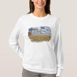 T-shirt Vieille grange dans le domaine de blé 2