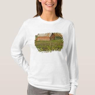 T-shirt Vieille grange rouge au bord du vignoble Zinfandel