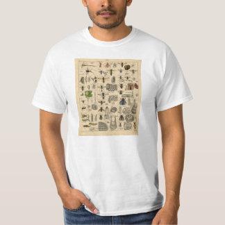 T-shirt vintage de taxonomie d'entomologie