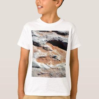 T-shirt Voies de dinosaure au nord de hampe de drapeaux