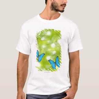 T-shirt Voler de papillons