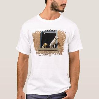 T-shirt Vue d'angle faible des chiens dans la fenêtre