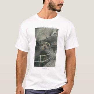 T-shirt Vue d'arcade de cathédrale de piscine de Siloam