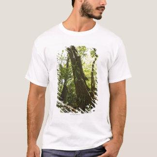 T-shirt vue de forêt tropicale, Dominique