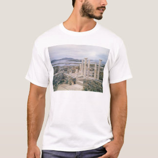 T-shirt Vue de la Chambre de Cléopâtre
