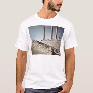 T-shirt Vue de l'escalier est de l'Apadana