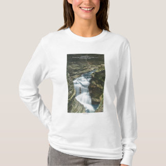 T-shirt Vue de parc d'état des automnes de diamant