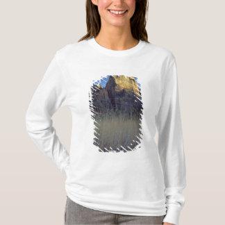 T-shirt Vue de plaine inondable de rivière de Vierge,