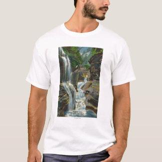T-shirt Vue des automnes et du pont d'arc-en-ciel