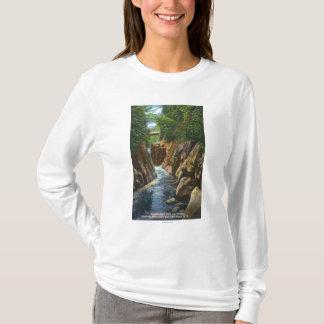 T-shirt Vue des automnes et du pont de rivière d'Ausable