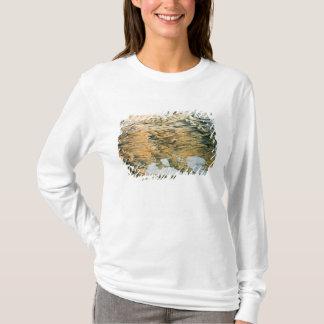T-shirt Vue panoramique de tout le empire de la Russie