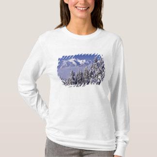 T-shirt WA, NP olympique, chaîne de montagne olympique,