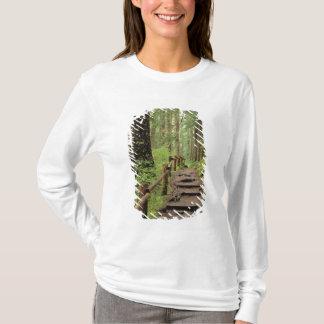 T-shirt WA, NP olympique, vallée de solénoïde Duc, forêt