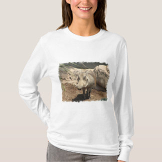 T-shirt Warthog Hoody