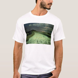 T-shirt Wheatfields mûrs
