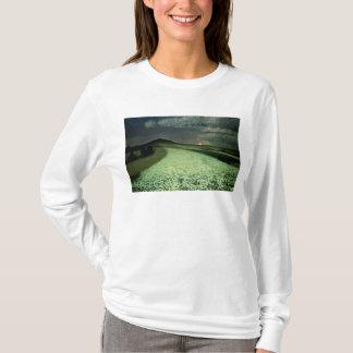 T-shirt Wheatfields mûrs