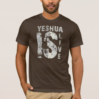 T-shirt Yeshua is alive 43975 Gris