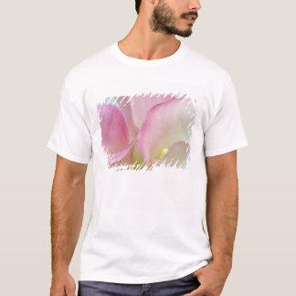 T-shirt Zantedeschias roses