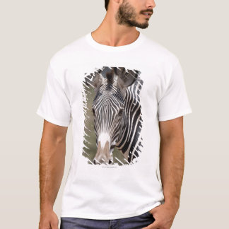 T-shirt Zèbre, Kenya, Afrique