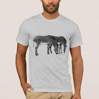 T-shirt zèbres pour Taylor
