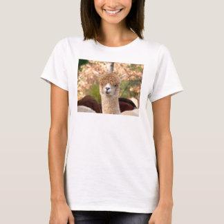 T-shirts d'alpaga