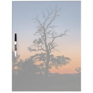 Tableau Effaçable À Sec Arbre sur un arrière - plan de coucher du soleil