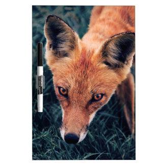Tableau Effaçable À Sec Le Fox rouge