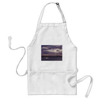 Tablier Cerf-volant surfant à la plage de St Kilda