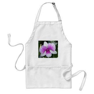 Tablier fermez-vous d'une belle orchidée pourpre et