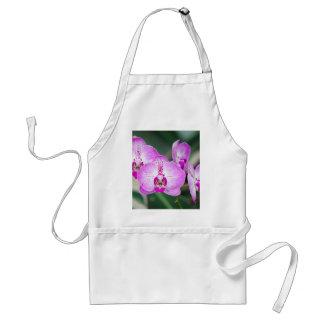 Tablier Miscellaneous - Orchid Patterns Seven