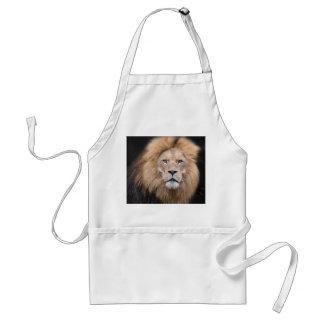 Tablier Portrait de plan rapproché d'un lion masculin