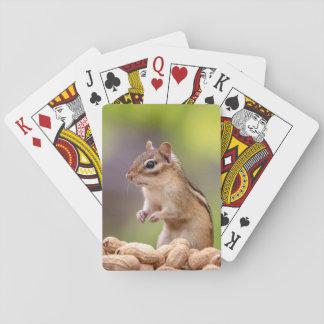 Tamia avec des arachides jeux de cartes