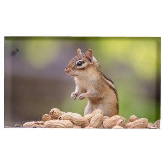 Tamia avec des arachides porte-cartes de placement