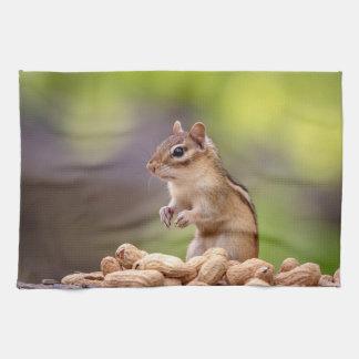 Tamia avec des arachides serviettes pour les mains