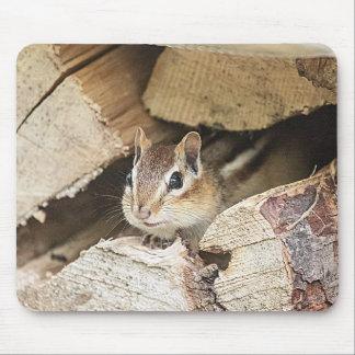 Tamia dans une pile en bois tapis de souris