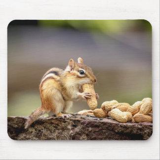 Tamia mangeant une arachide tapis de souris