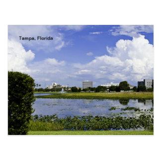 Tampa, la Floride Carte Postale