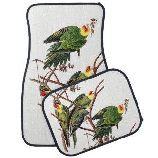 Tapis animaux de plancher de voiture d'oiseau de
