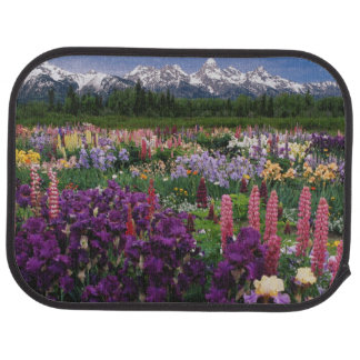 Tapis De Sol Iris et jardin de loup et chaîne de Teton,