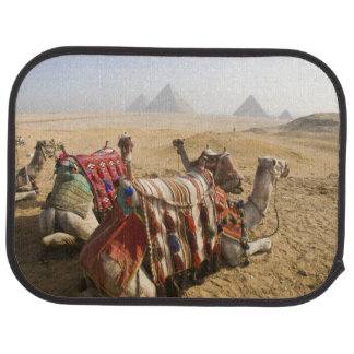 Tapis De Sol L'Egypte, le Caire. Regard fixe de repos de