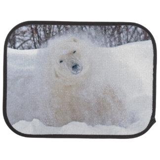 Tapis De Sol Ours blanc secouant la neige sur la toundra