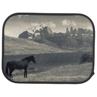 Tapis De Sol Paysage avec les chevaux 2