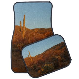 Tapis De Sol Paysage de désert du coucher du soleil I Arizona