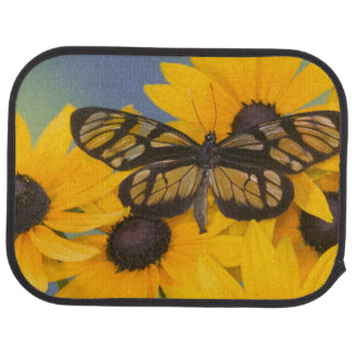 Tapis De Sol Photographie de Sammamish Washington du papillon