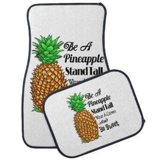 Tapis De Sol Soyez un usage grand de support d'ananas qu'une